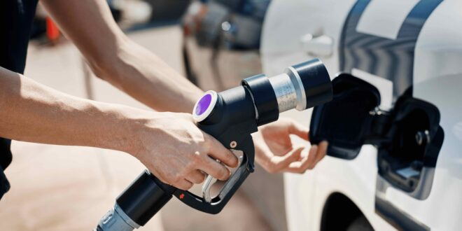 An open road ahead for the fuel cell
